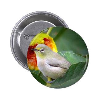 Bird Eating A Fig Button