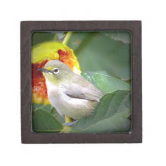Bird Eating A Fig Keepsake Box