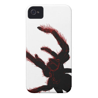 Bird Eating Spider iPhone 4 Case