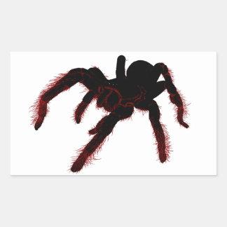 Bird Eating Spider Rectangle Sticker