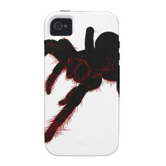 Bird Eating Spider Vibe iPhone 4 Cases