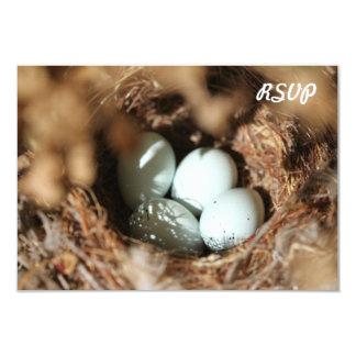 Bird Eggs Nest 3.5x5 Paper Invitation Card