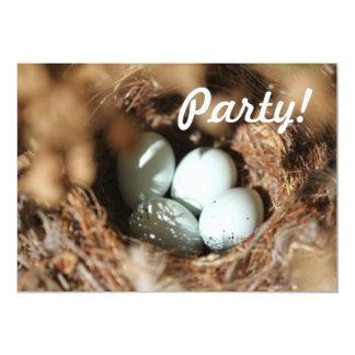 Bird Eggs Nest 5x7 Paper Invitation Card