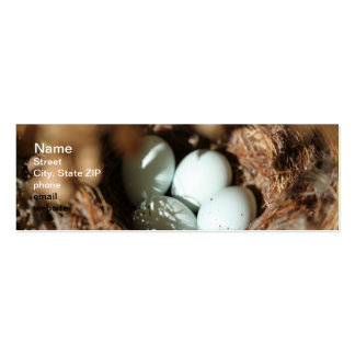 Bird Eggs Nest Double-Sided Mini Business Cards (Pack Of 20)