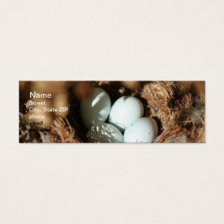 Bird Eggs Nest Mini Business Card