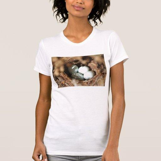 Bird Eggs Nest T-Shirt
