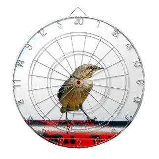bird enjoy human creation dart board