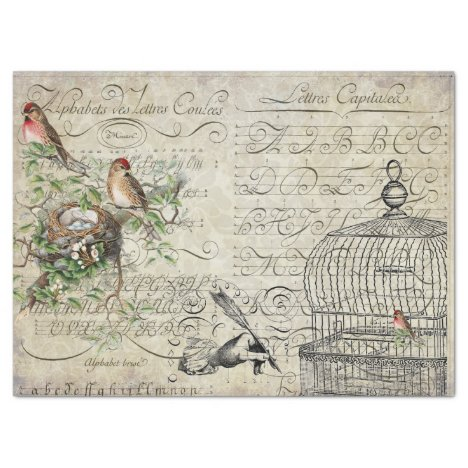Bird Ephemera Decoupage Sheet