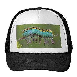 Bird-erpillar Trucker Hat