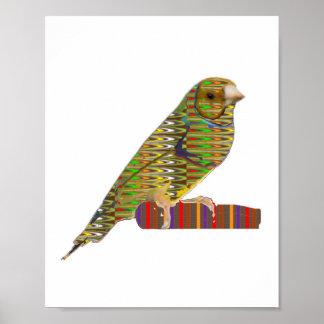BIRD Exotic Pet Wild Colorful  : cadeau pour tous Poster