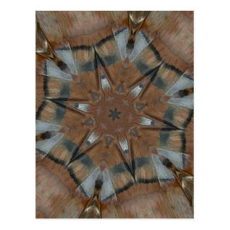 Bird Feather Tee Pee Kaleidoscope Mandala Postcard