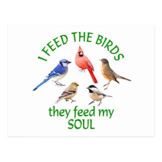 BIRD FEEDER POSTCARD