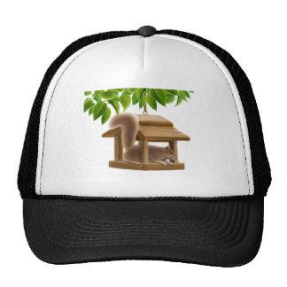 Bird Feeder Squirrel Hat