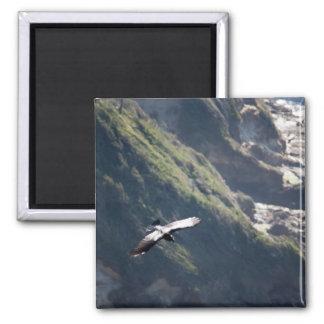 Bird Fly MAGNET