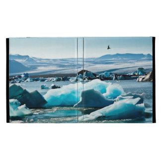 Bird Flying over Iceberg Lake iPad Case