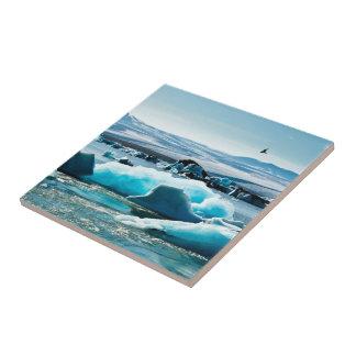 Bird Flying over Iceberg Lake Ceramic Tiles