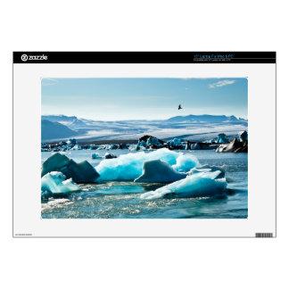 Bird Flying over Iceberg Lake Decal For Laptop