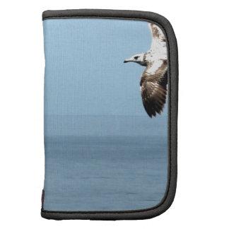 Bird flying over the ocean planner