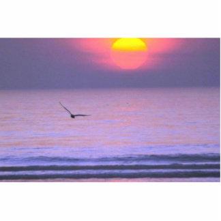 Bird Flying Over Water Standing Photo Sculpture