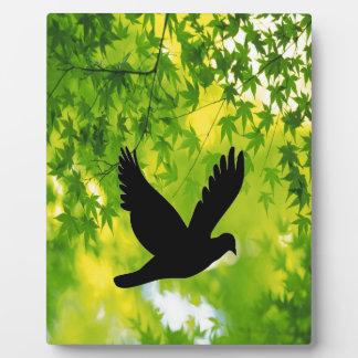 bird flying to freedom peace joy plaque
