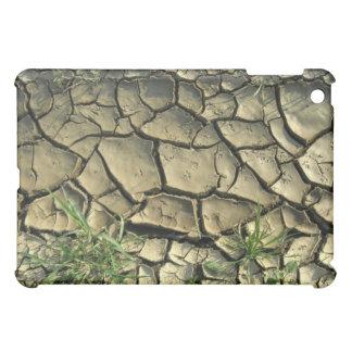 Bird Footprints In Dry Mud iPad Mini Cases