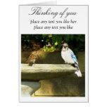 Bird friends cards