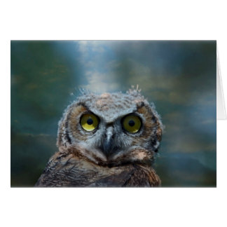 Bird Great Horned Owl peeping in the night Greeting Card
