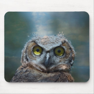 Bird Great Horned Owl peeping in the night Mouse Pad