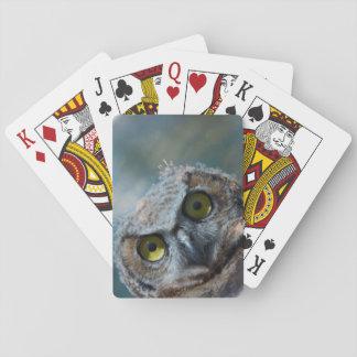 Bird Great Horned Owl peeping in the night Poker Deck