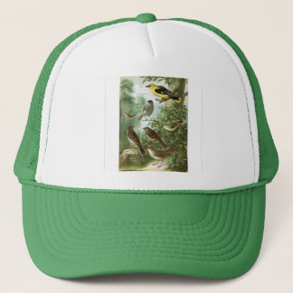 Bird group 2 trucker hat