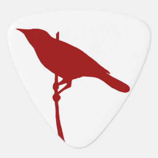 Bird Guitar Pick