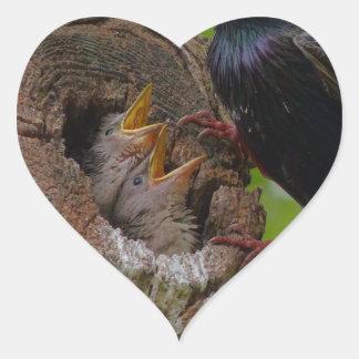 bird heart sticker