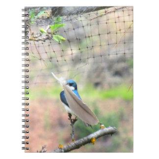 Bird Holding A Feather Notebook