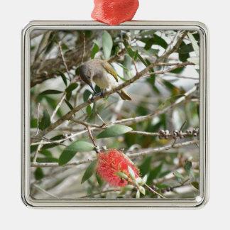 BIRD HONEY EATRE & BOTTLE BRUSH AUSTRALIA METAL ORNAMENT