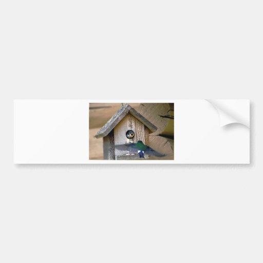 Bird house car bumper sticker