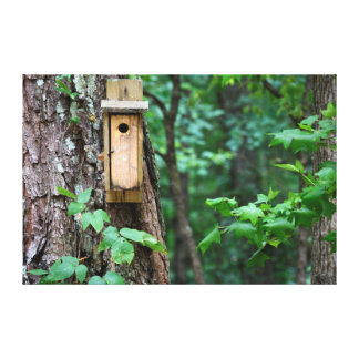 Bird House nesting box Canvas Print