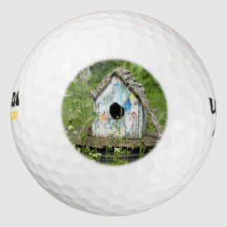 Bird House-Not a Hole in One Pack Of Golf Balls