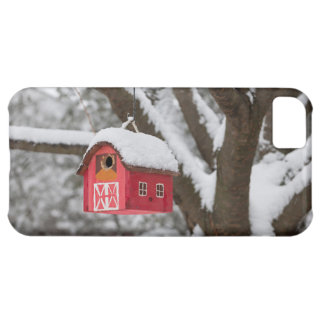 Bird house on tree in winter cover for iPhone 5C