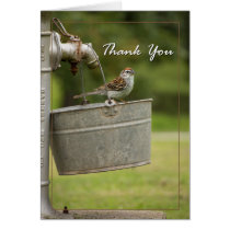 Bird in a bucket card