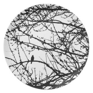Bird in a Maple - white Melamine Plate