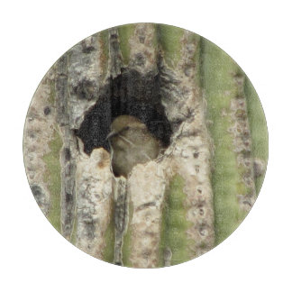 Bird in a Saguaro Nest Cutting Boards