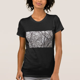 Bird in a Snow Covered Tree T Shirts