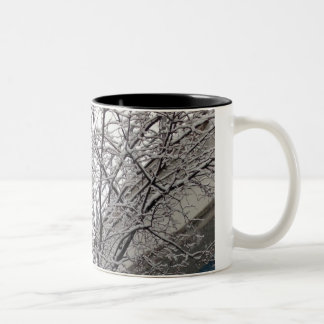 Bird in a Snow Covered Tree Two-Tone Coffee Mug