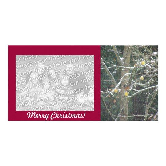 bird in a winter tree card