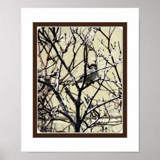 Bird in Branches Fine Art Photograph Poster