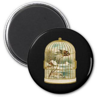 Bird In Cage Winter Scene Magnet