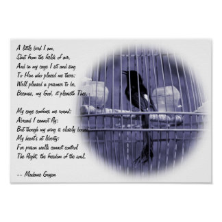 Bird in Cage with Poem Poster
