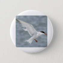 Bird in Flight Button