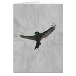 Bird in Flight Card