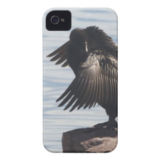 Bird in Flight iPhone 4 Cases